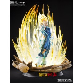 Dragon Ball Z Broly Le super Saiyan Légendaire HQS+ by TSUME BY TSUME