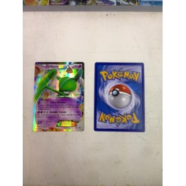 carte Pokemon GALLAME Ex promo XY45 No display no booster