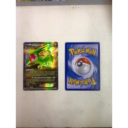 carte Pokemon LIBEGON promo XY61 No display no booster