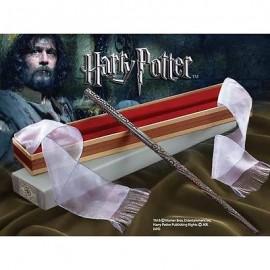 Harry Potter replique baguette de SIRIUS BLACK
